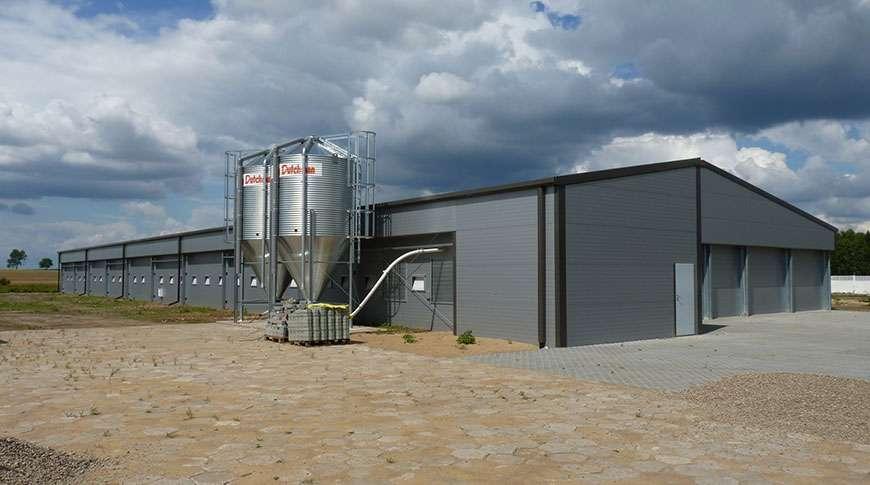 chicken farms steel industrial breeding metal PESB